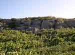 anguilla_land_f